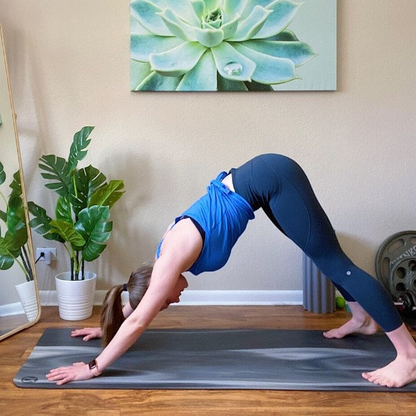 Push Up to Plank Pike Position 2