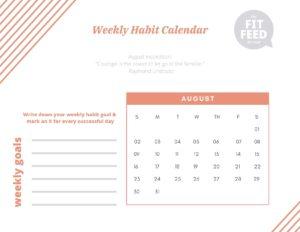 Habit Calendar August 2020