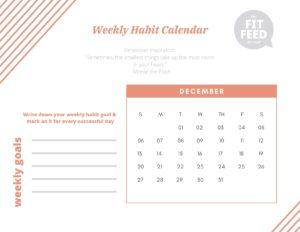 Habit Calendar December 2020