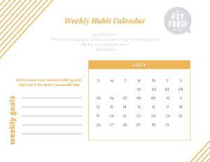Habit Calendar July 2020