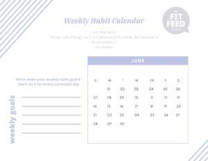 Habit Calendar June 2020