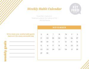 Habit Calendar November 2020